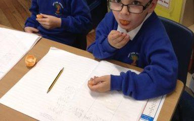 Year 1 Chestnut explore some orange adjectives…