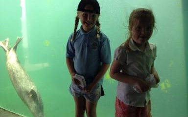 Year 2 take a 'fishy' trip…