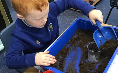 Year 1 investigate what plants need to grow…