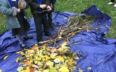 Year 1 'structure' a tree…